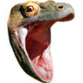 Twitch Emote KomodoHype